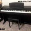 电子琴/数位钢琴系列