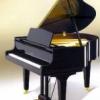 全新演奏鋼琴